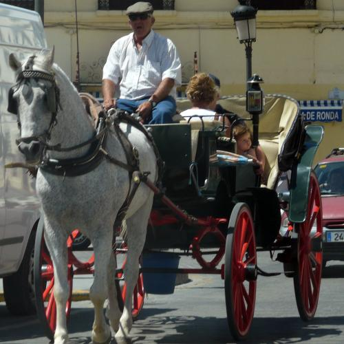 Spain photography tips: Horse carriages in popular cities